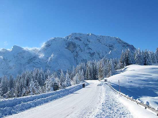 Den Fußgängern auf der Rossfeld-Panoramastraße ist angesichts des grandiosen Bergpanoramas mit dem Hohen Göll wohl nicht bewusst, dass sie gerade österreichisches Staatsgebiet betreten (Foto: Hedwig Meindl)